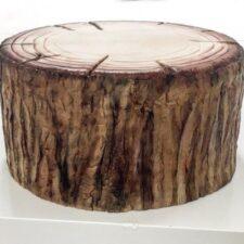 scoarta de copac3