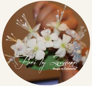 Curs modelare flori cofetarie