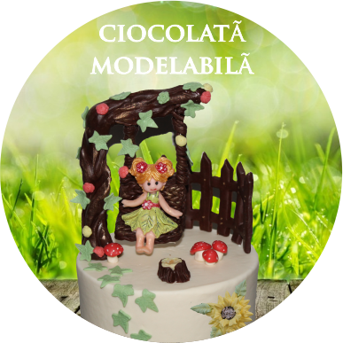 curs-ciocolata-modelabila