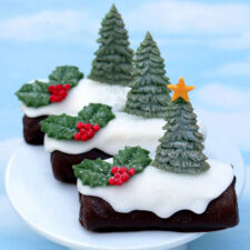 ce0052_katy_sue_fir-trees-silhouettes-mould2